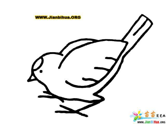梨花的简笔画_儿童画简笔画大全_儿童画人物简笔画 ...