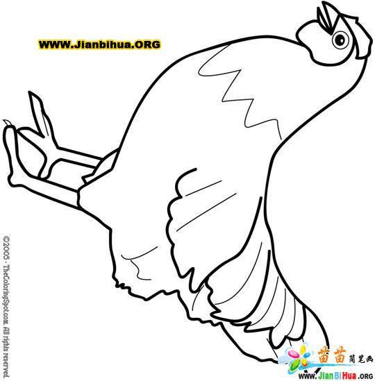 如何画小鸟简笔画图片教程第4张  树 简 笔画,树简笔画图片大全,圣诞图片