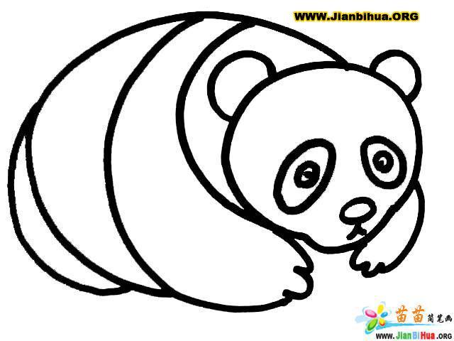 如何画熊猫简笔画4张图片教程(第5张)