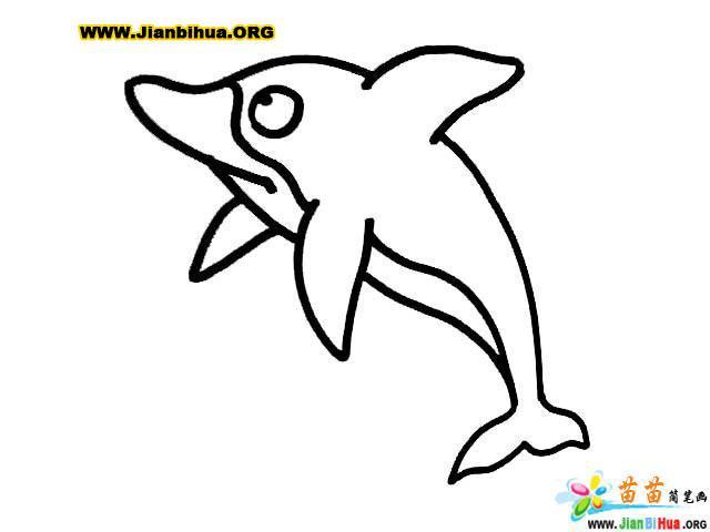如何画海豚简笔画图片教程8张