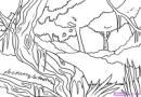 热带原始森林简笔画图