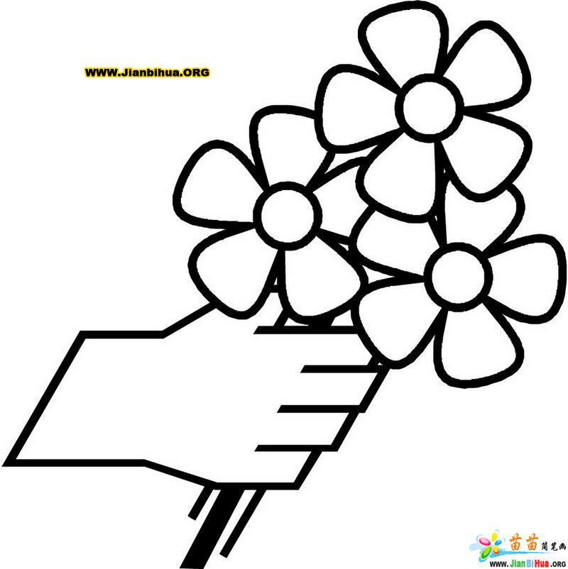 手拿鲜花的简笔画图片图片