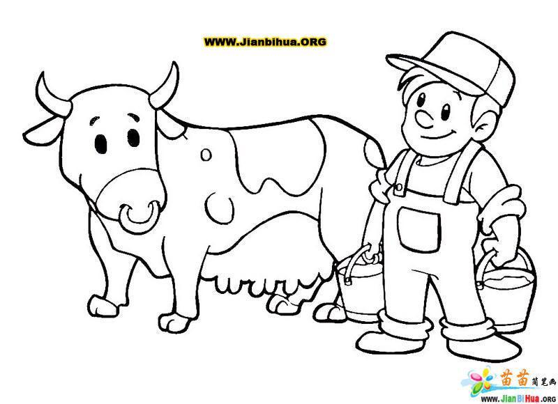 前几天到上海郊区去坐客,遇见多年不见的咱河南老乡,亲热的邀请我到他工作单位的奶牛场看看,如果我没有年轻时的知青经历我就不会接受这邀请,正是有这段知青生活才高兴的跟他走进奶牛场,真是和我们知青年代大不一样,完全是现代化奶牛场,挤奶倒出奶直接流到大型不锈钢储存罐里,一直到出厂完全是自动化。回来后我脑海一直在想着我知青时的奶牛号、、、、 北安农场二分厂的知青宿舍前排就是奶牛号,那时候的牛奶没有现代的豪华的包装,更没有酸奶、水果奶、奶酪等。就是一种现挤出来牛奶,烧开就喝,食堂也时常卖,加糖钱二分,一毛钱一碗,夏天