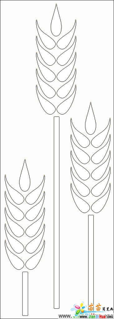 麦穗简笔画4张图片(第2张)图片