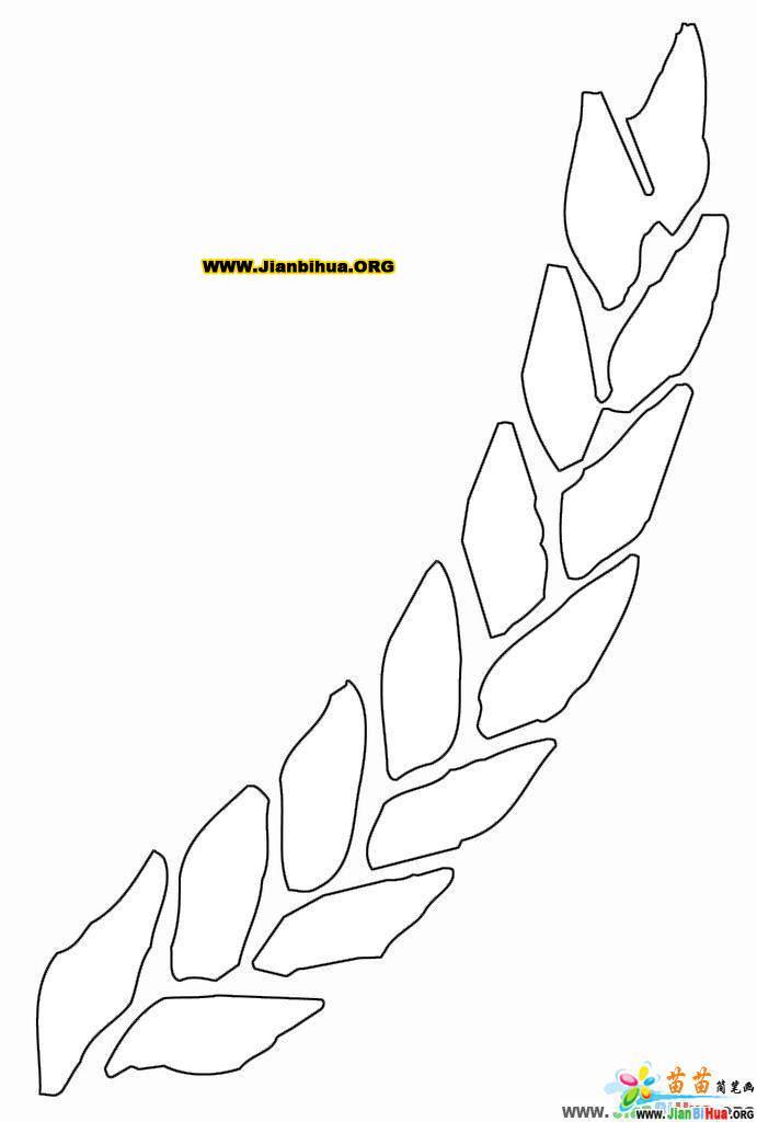 麦穗简笔画4张图片