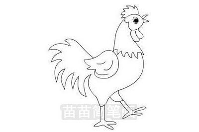 大公鸡简笔画