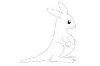 袋鼠简笔画怎么画