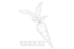 胡萝卜简笔画