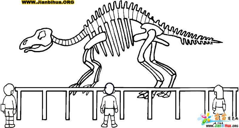 恐龙化石简笔画图片