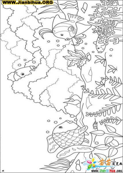 迪斯尼之彩虹鱼(铅笔画)简笔画13张; 海底世界填色图;; 迪斯尼铅笔画