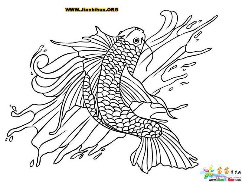 鱼形图案简笔画的画法