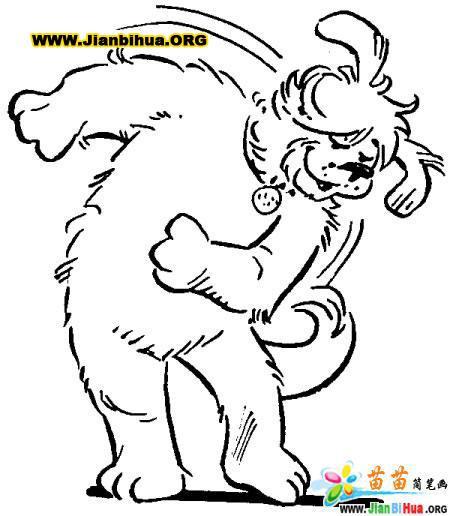 大猩猩简笔画图片9张第9张
